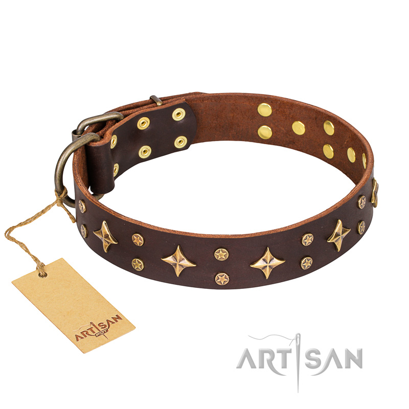 Brown Leather Dog Collar FDT Artisan