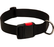 Strong Nylon Collar for Dogs with Quick Release