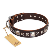 "Leather Collar for Big Dogs ""Perfect Impression"" FDT Artisan"