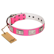 FDT Artisan Pink Dog Collars for Large Dogs with Silver Plates