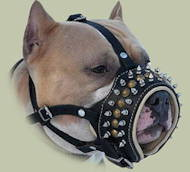 Staffy Muzzle Soft Padded | Staffordshire Bull Terrier Muzzle UK