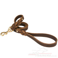 The Best Dog Lead for Dog Walking, Training, Tracking & Service