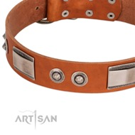 New Premium Dog Collar Design of Tan Leather FDT Artisan
