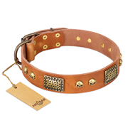 "Premium Quality Leather Dog Collar ""Saucy Nature"" FDT Artisan"