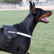 Light-Reflecting Dog Harness for Doberman with Sign Patches