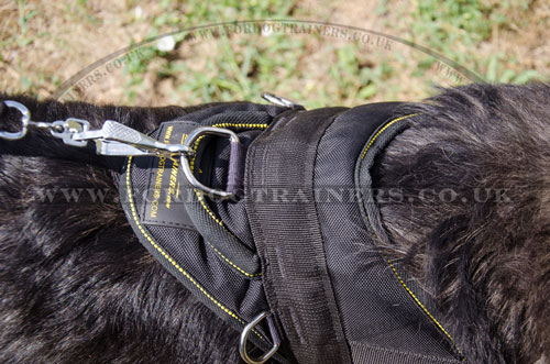 Caucasian Shepherd dog towing harness buy online