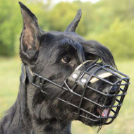 Muzzles for Dogs UK Bestsellers! Perfect for Wet and Cold