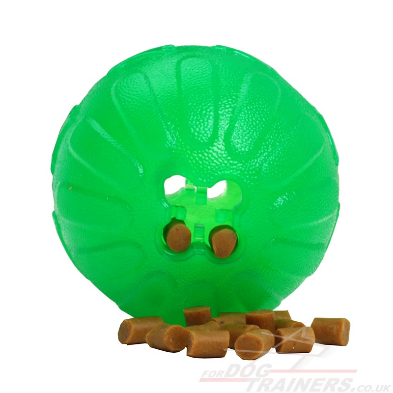 Dog Toy With Treat Inside