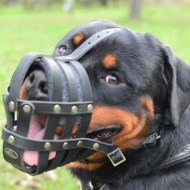 Rottweiler Muzzles UK Leather Basket Light and Super Ventilated