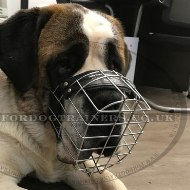 Bestseller St Bernard Dog Muzzle that Allows Eating and Drinking