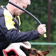 Agitation Stick Ideal for SCHUTZHUND Dog Training UK