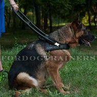 Assistance Dog Harness with Handle for German Shepherd Guide Dog