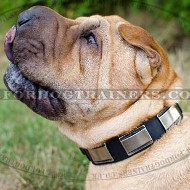 Strong Leather Dog Collar for Shar Pei Dogs Walking
