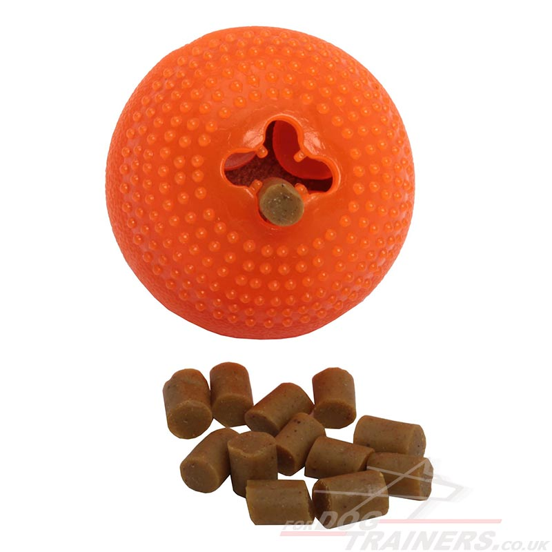 Best Small Dog Toys : Best dog toy for small funny toys treats