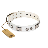Designer Snow White Dog Collar with Silver-Shiny Finery Artisan