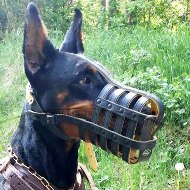 Soft Padded Dog Muzzle for Doberman Pinscher Muzzle Size