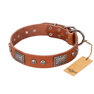 "Studded Dog Collar of Natural Leather Color ""Sparkling Skull"""