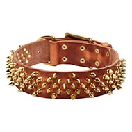 NEW Handmade Dog Collar with Golden-Shiny Spikes