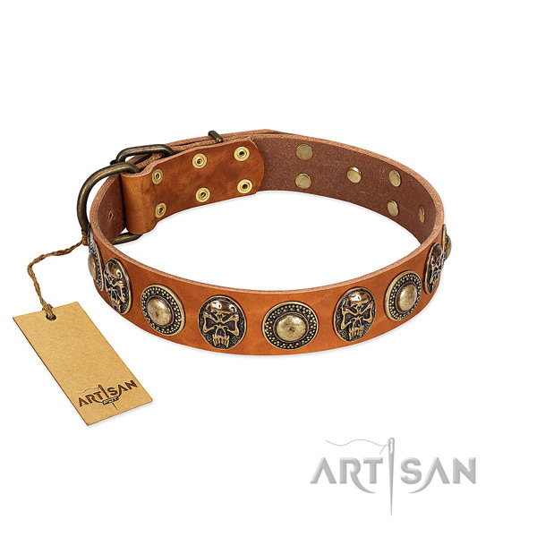 Mysterious Pirate Light Tan Leather Dog Collar