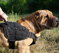 Walking Shar Pei Harness with Handle, Strong Nylon