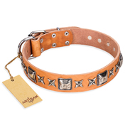 "Artisan Handmade Dog Collar ""Silver Chick"" of Tan Leather"