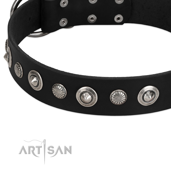 Leather Dog Collar XL