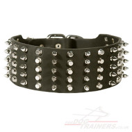 Large Dog Collar, Wide Spiked and Studded Leather of 3""