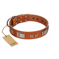 Artisan Dog Collar with Plates and Stars Handmade of Tan Leather