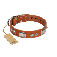 Best Tan Leather Dog Collar Charming Design by FDT Artisan