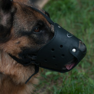 The Best German Shepherd Dog Muzzle that Won't Come Off
