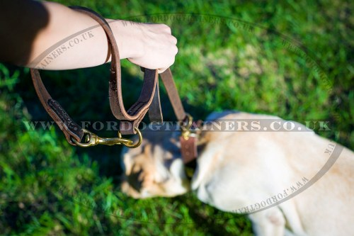 Strong Leather Dog Lead with Handle