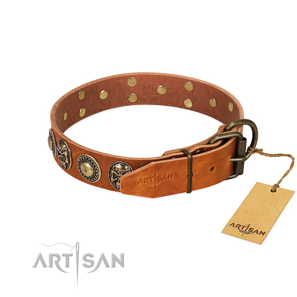 Artisan dog collar with buckle closure