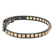 Splendid Design of Dog Leather Collar with Square Brass Studs