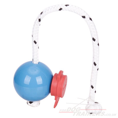 Magnetic Dog Ball & a MAXI Power-Clip