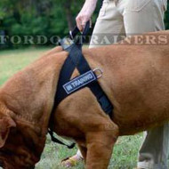 Dogue De Bordeaux harness - Best control of your dog