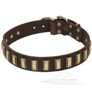 Trendy Dog Collar With Plates | Large Dog Collar UK