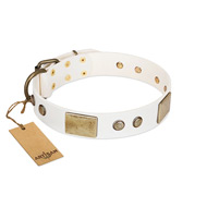 Elegant White and Gold Dog Collar with Studs FDT Artisan