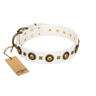 Designer Studded White and Gold Dog Collar from FDT Artisan