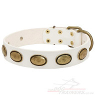 White Leather Dog Collar Limited Edition | Gorgeous Dog Collar