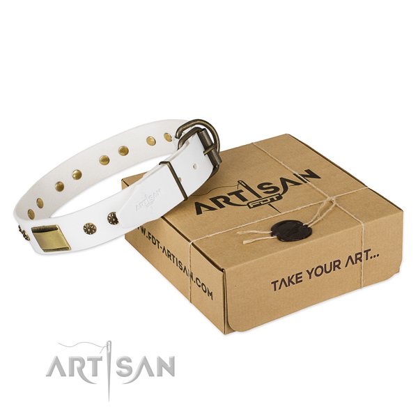 Luxury Dog Collar with a Gift Box