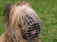 Briard Muzzle - Best Wire Dog Muzzle for Briard Bestseller UK