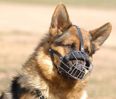 Bestseller German Shepherd Muzzle UK for Dog's Individual Size